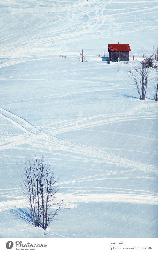 ein kahler strauch im schnee observiert das kleine holzhäuschen mit dem roten dach am schihang Winter winterlich Schnee Abhang Schneespuren Skipiste Schneedecke