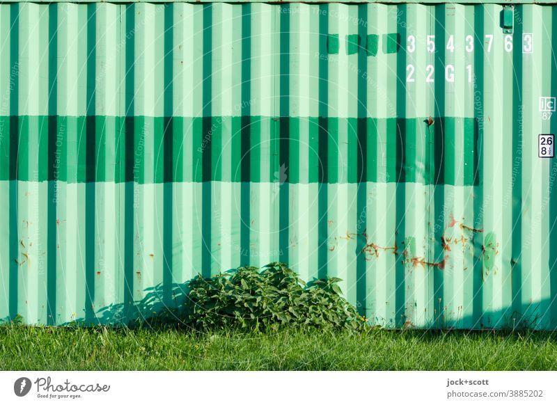 grüner Container im Grünen Streifen Strukturen & Formen Beschriftung Buchstabe Ziffern & Zahlen Wiese Strauch Schramme Rost Schatten Natur Metall