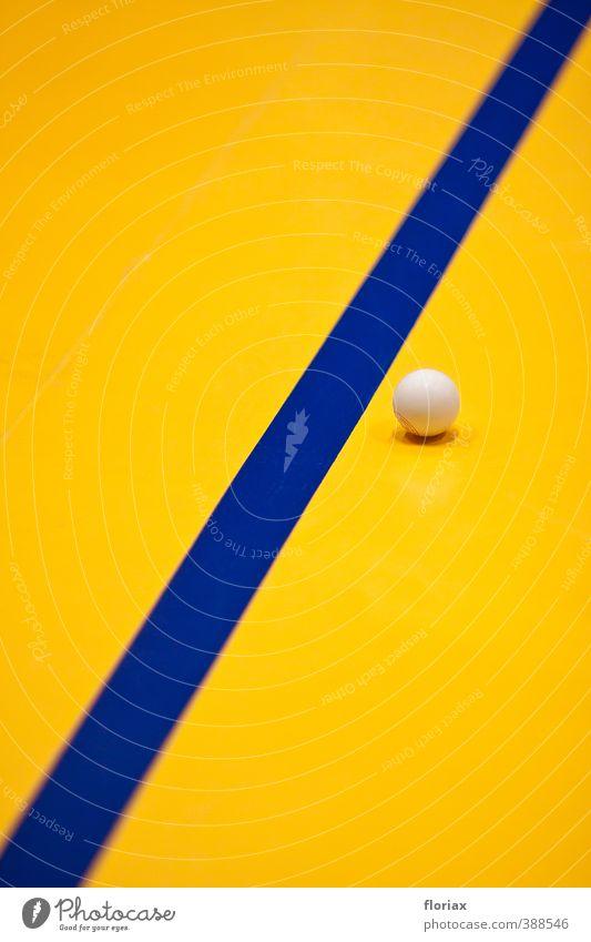 sporthallenästhetik blau weiß ruhig gelb Sport Spielen Linie Freizeit & Hobby Zufriedenheit ästhetisch Fitness rund Kunststoff Ball sportlich Konzentration
