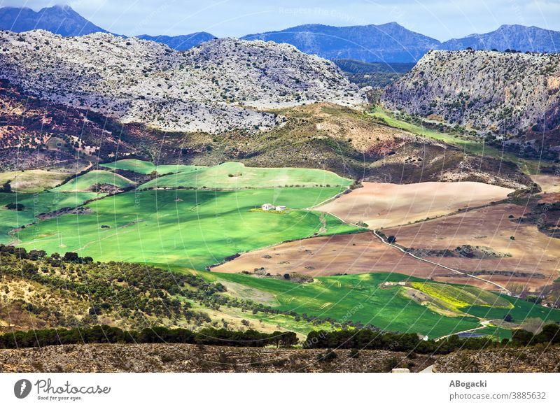 Andalusiens Landschaft in Spanien Ackerbau andalusisch Andalusia schön kultiviert Umwelt Europa Bauernhof Ackerland Feld Laubwerk Grasland grün Grün Hügel