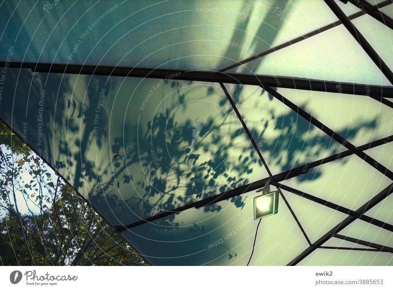 Laubwerk Pavillon Zeltplane wetterfest Abdeckung Schatten verzweigt Geäst Zweige u. Äste Blatt Laubbaum Licht Vernetzung Verbindung Verstrebung Sicherheit
