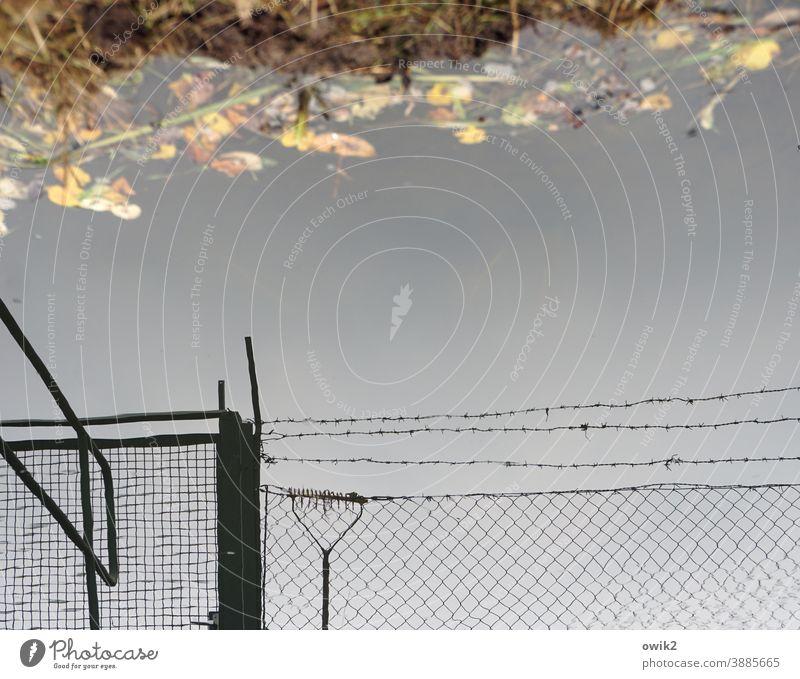 Draußen bleiben Stacheldrahtzaun abwehrend Sicherheitsdienst abweisend Außenaufnahme Detailaufnahme Strukturen & Formen Menschenleer Textfreiraum oben Kontrast
