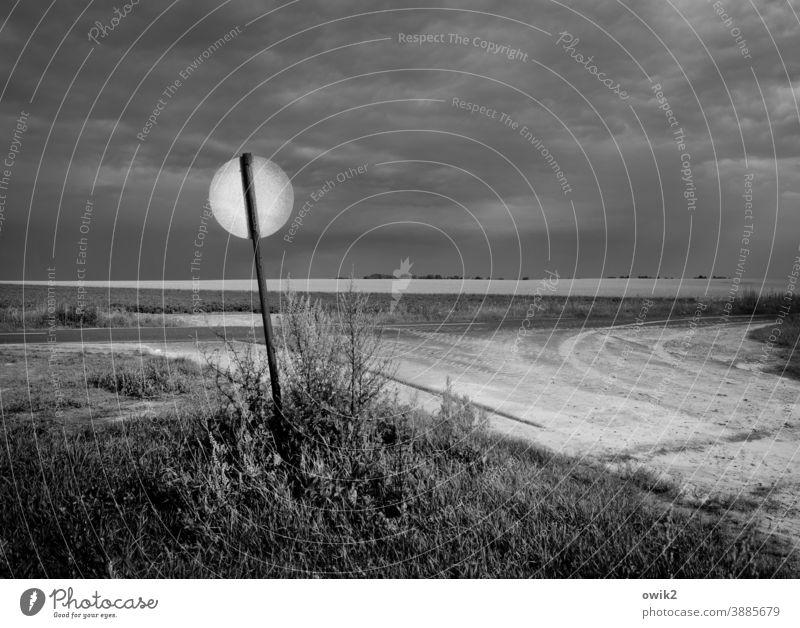Hinterteil Schild Rückseite Verkehrszeichen Straßenrand Wege & Pfade Sträucher Himmel Wolken dunkel Kontrast Außenaufnahme Menschenleer Schilder & Markierungen