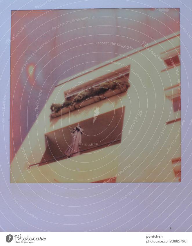 Polaroid zeigt mehrfamilienhaus mit Balkone. Sommer, sonnenschirm Wohnen wohnhaus miete balkon polaroid gebäude Blumenkasten pflanzen dekoration Fenster