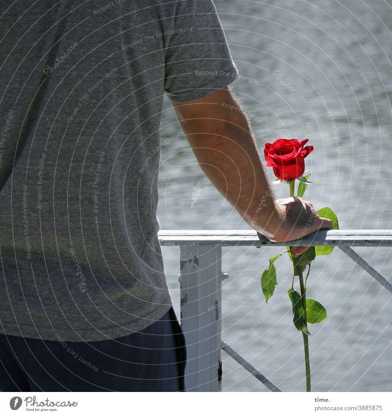 Farbkomposition | Erkennungszeichen mann rücken rose geländer fluss wasser stehen halten romantik einsamkeit verabredung warten rückansicht T-Shirt grau rot