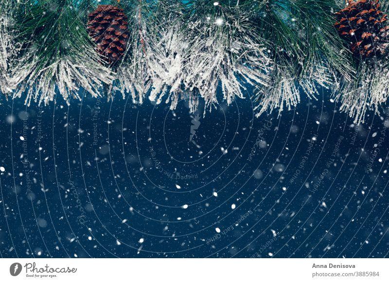 Weihnachtsbaumzweige als Rahmen Ast Postkarte Weihnachten Feier grün Dekoration & Verzierung weiß Feiertag Kiefer saisonbedingt Winter Saison Borte Immergrün