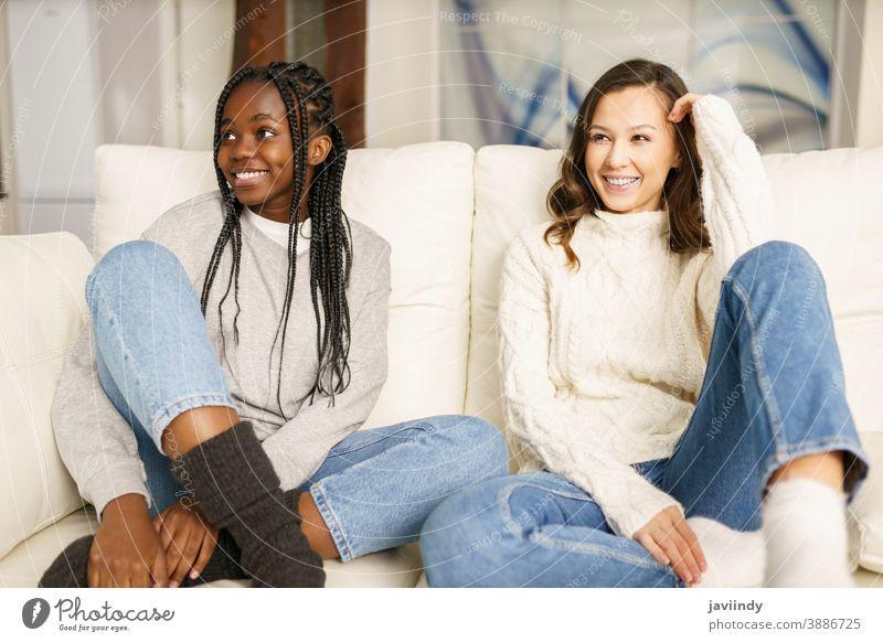 Zwei Freundinnen von Studentinnen lächeln zusammen auf der Couch zu Hause. Frauen multiethnisch rassenübergreifend Liege Lachen Schüler schwarz Afro-Look