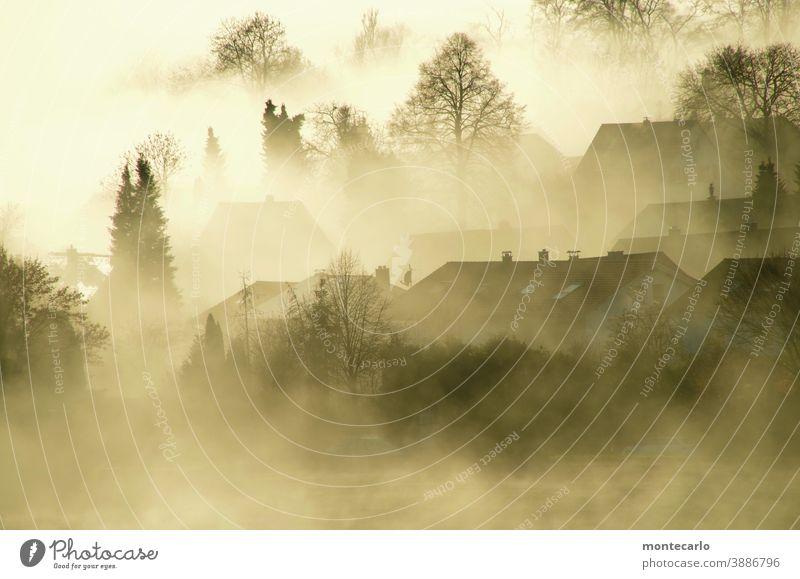 Nebel liegt über einem Dorf bei Sonnenaufgang Licht Morgendämmerung Außenaufnahme natürlich authentisch Schönes Wetter Sonnenlicht Herbst unheimlich neblig