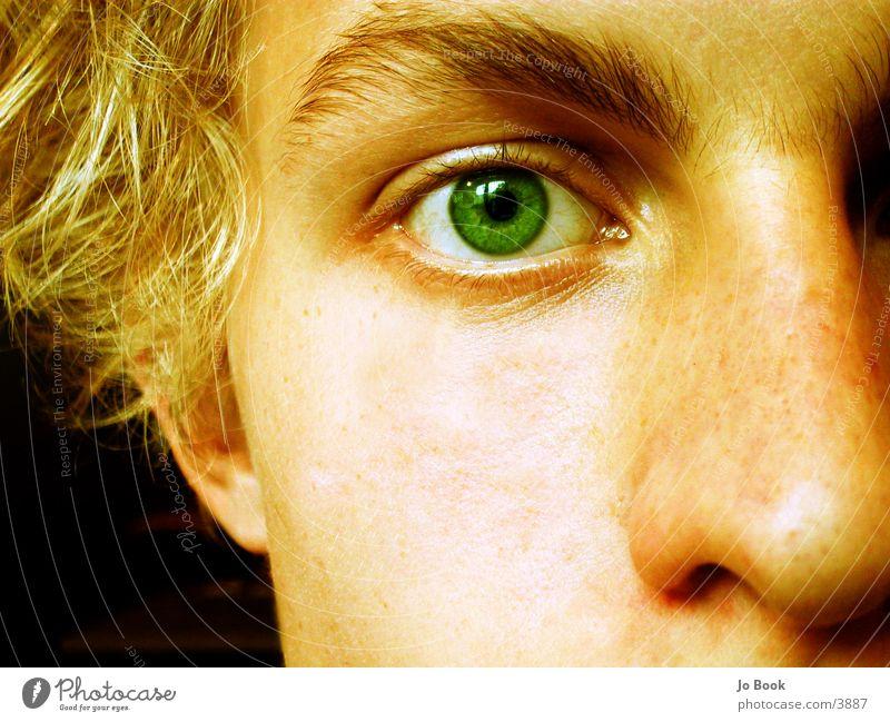 Just apart of me grün Augenbraue blond träumen Hälfte Wange Mann Jo Nase Haare & Frisuren Blick grünes Auge Teile u. Stücke Gesicht leer Tiefsinn