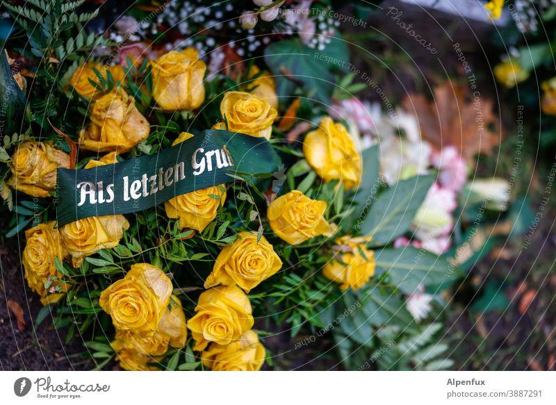 ein allerletzter Gruß... Kranz Beerdigung Menschenleer Dekoration & Verzierung Tod Trauer Trauerfeier Vergänglichkeit Traurigkeit Farbfoto Außenaufnahme
