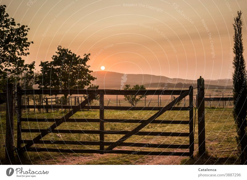 Die Sonne geht auf hinter dem Hügel, noch ist das Gatter zur Weide geschlossen Landschaft Natur Sonnenaufgang Morgen Sommer Dämmerung Bäume Himmel Horizont Zaun