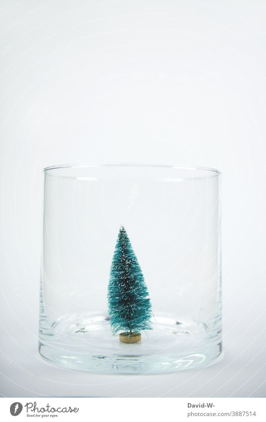 miniatur Weihnachtsbaum / Tannenbaum in einem Glas als Weihnachtsdekoration Weihnachten & Advent Miniatur weihnachtlich weiß niedlich Feste & Feiern festlich