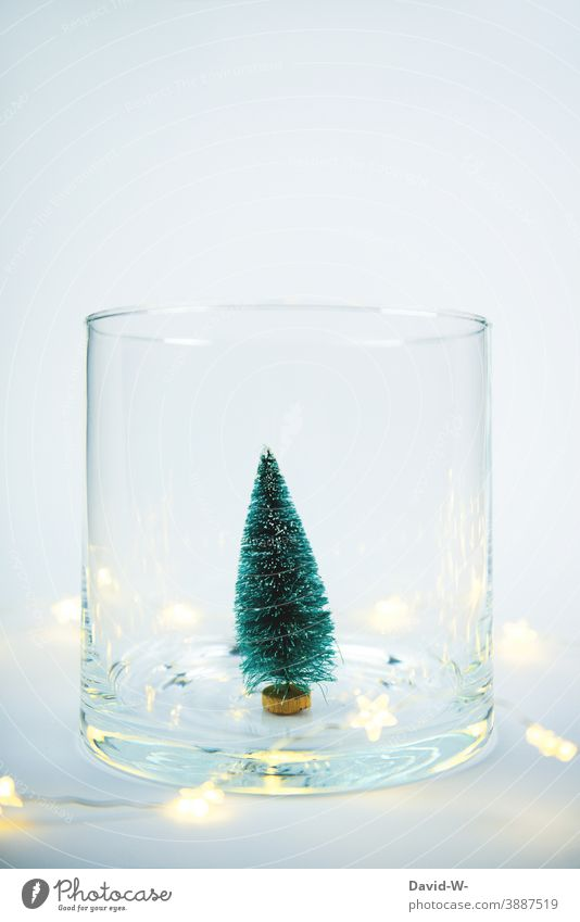 Weihnachtsdekoration - Miniatur Weihnachtsbaum mit Lichterkette in einem Glas Weihnachten & Advent Tannenbaum Platzhalter weihnachtlich leuchten