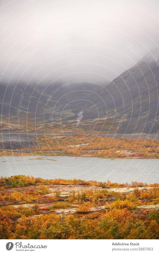 Scenic Blick auf See in den Bergen auf nebligen Tag Herbst Wald Berge u. Gebirge Nebel Landschaft gelb Baum Windstille atemberaubend ruhig majestätisch