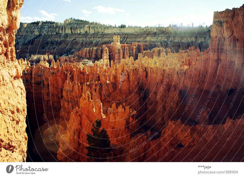 der bryce ist heiß. Himmel Ferien & Urlaub & Reisen rot Landschaft Stein Felsen orange Aussicht Schönes Wetter Urelemente USA Fernweh Amerika bizarr Surrealismus Säule