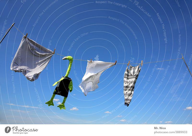 Gans viel Wäsche Wäscheleine Waschtag aufhängen Himmel Blauer Himmel Wind T-Shirt shirt weiß Wäsche waschen Häusliches Leben Sauberkeit Unterhemd Kleidung