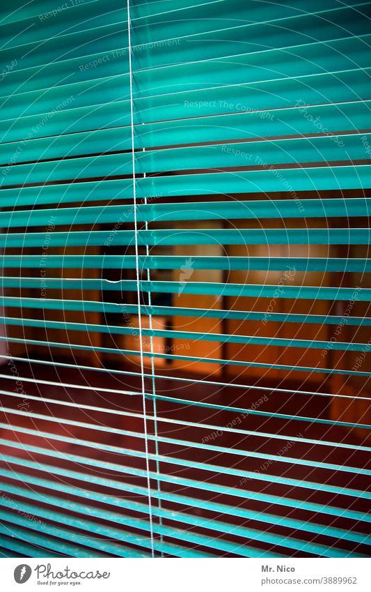 Einen Blick riskieren Jalousie Rollo Lamelle Lamellenjalousie Häusliches Leben zuhause bleiben Wohnung Durchblick Fensterblick Sicherheit Schutz Neugier