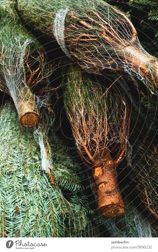 Weihnachtsbaum, verpackt weihnachtsbaum christbaum verkauf verkaufsstand advent adventszeit weihnachtszeit virweihnachtszeit vorbereitung tradition poster