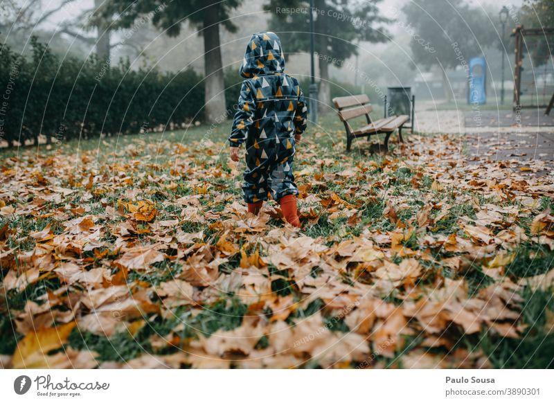 Kind mit roten Gummistiefeln beim Gang durchs Herbstlaub authentisch herbstlich Herbstfärbung fallen gefallen Blätter Laubwerk Tag Umwelt Außenaufnahme