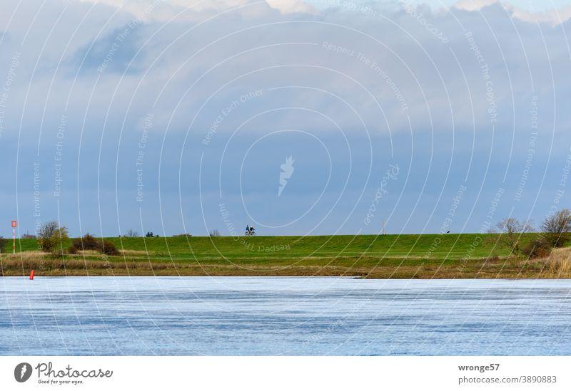 Blick über die Elbe bei Magdeburg auf die östliche Uferseite mit Deich und Radlern Fluss Flussufer Herbst bedeckter Himmel Radfahrer Radtouristen Farbfoto