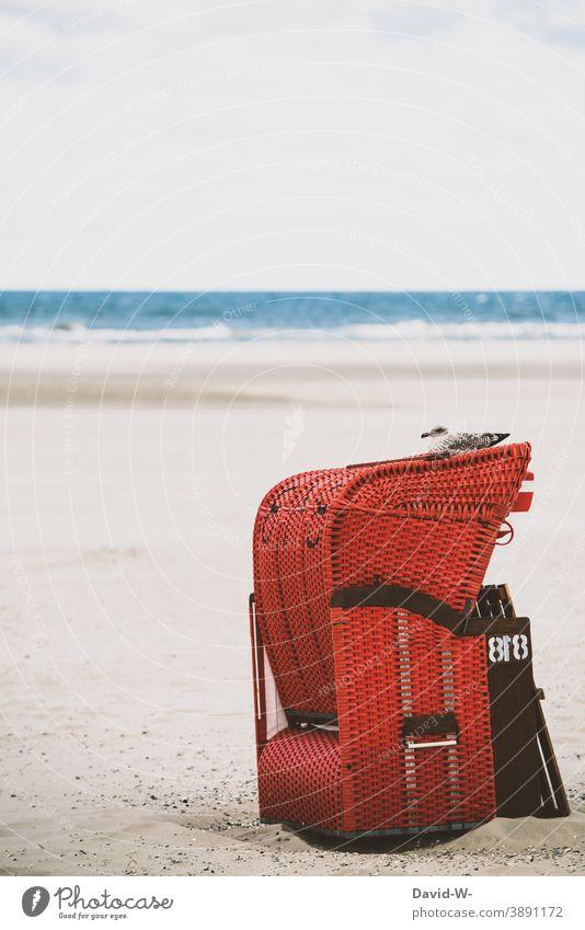 Strandkorb mit Möwe am Strand Ferien & Urlaub & Reisen ruhe Meer Nordsee Ostsee Erholung Küste