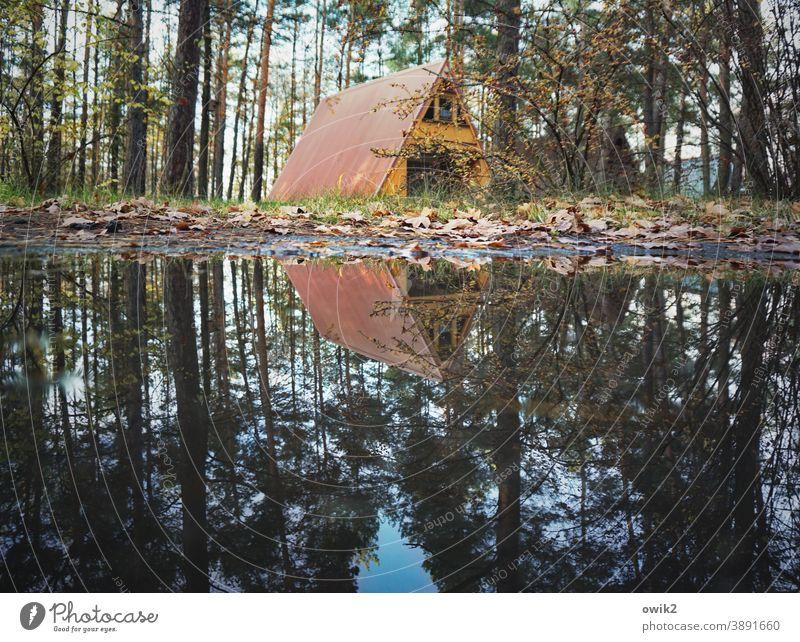 Wassergrundstück Feriensiedlung Außenaufnahme Bungalow Erholung Natur einfach Dachschräge Farbfoto Baum Landschaft Wald Ferienhütte Ferienhaus Dreieck Herbst
