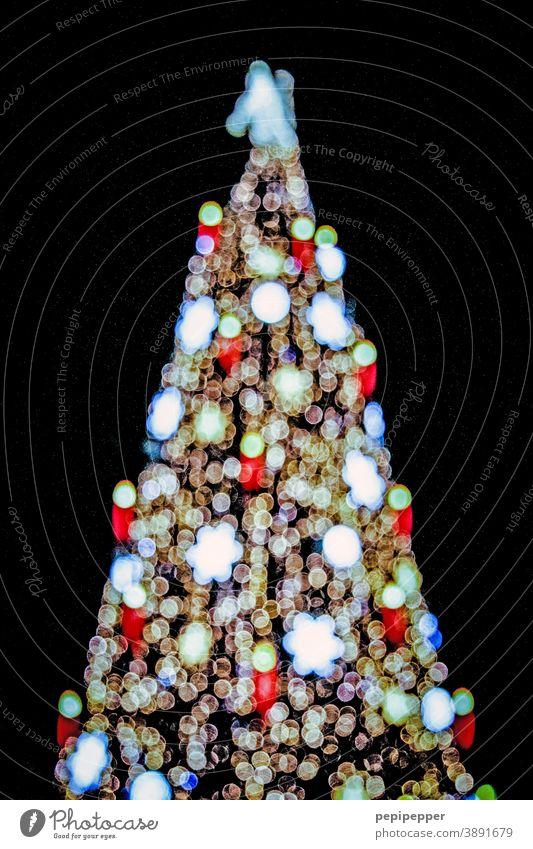 Weihnachtsbaum Weihnachten & Advent Weihnachtsdekoration Tannenbaum weihnachtlich Dekoration & Verzierung Winter festlich Feste & Feiern Lichterkette