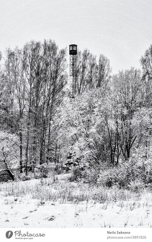 Feuerwachturm im Winter im lettischen Wald gefunden Architektur Feuerwehrmann Lager Cloud Konzentration Europa bewachen hoch Landschaft Militär niemand