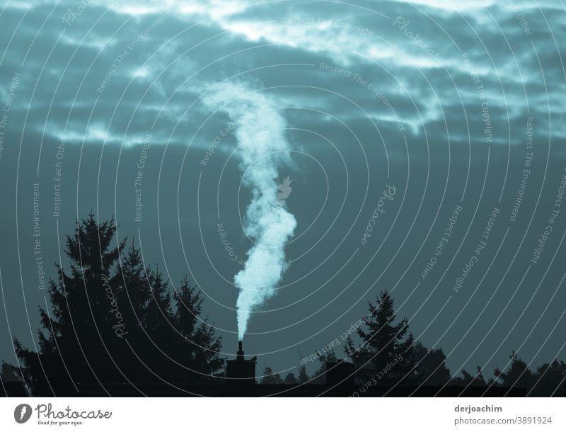 Rauch. Heller Rauch steigt in den Abendhimmel. Kein Wölkchen ist zu sehen.Rechts und links vom Schornstein stehen Bäume. Brand Nebel smoke Porträt schwarz Licht