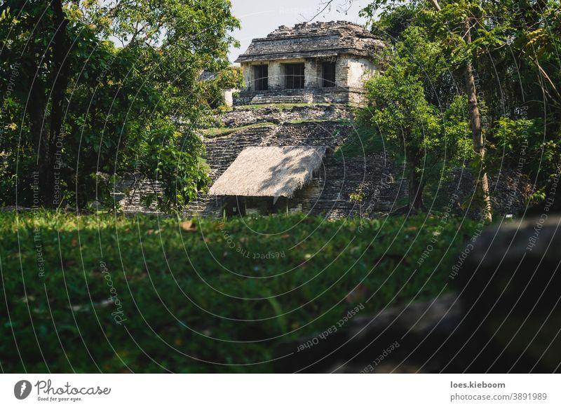 Kleiner pyramidenförmiger Maya-Ruinentempel auf der archäologischen Unesco-Stätte von Palenque, Chiapas, Mexiko antik Tourismus reisen Stein Pyramiden