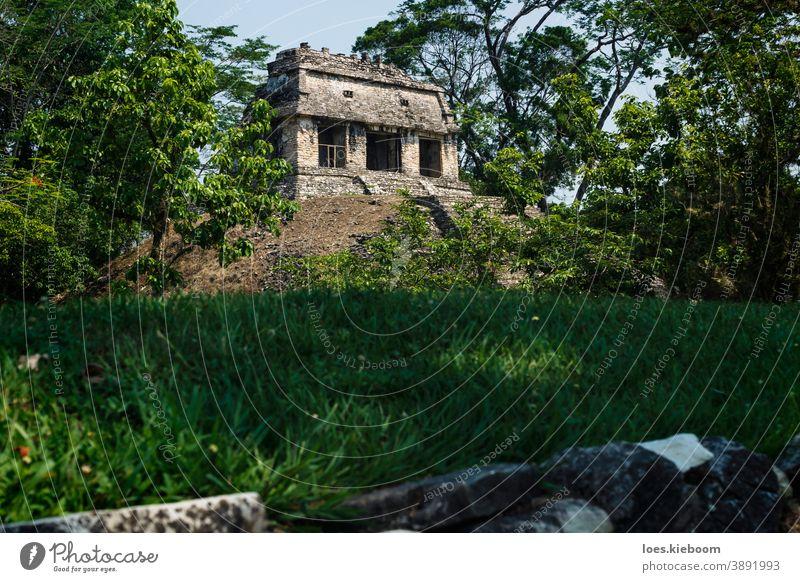 Kleiner pyramidenförmiger Maya-Ruinentempel an der archäologischen Stätte von Palenque, Chiapas, Mexiko antik Tourismus reisen Stein Pyramiden mexikanisch alt