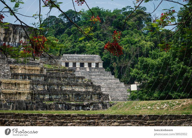 Tempel der Inschriften und Palast an der archäologischen Maya-Stätte in Palenque, Chiapas, Mexiko antik Tourismus reisen Stein Pyramiden mexikanisch alt Kultur