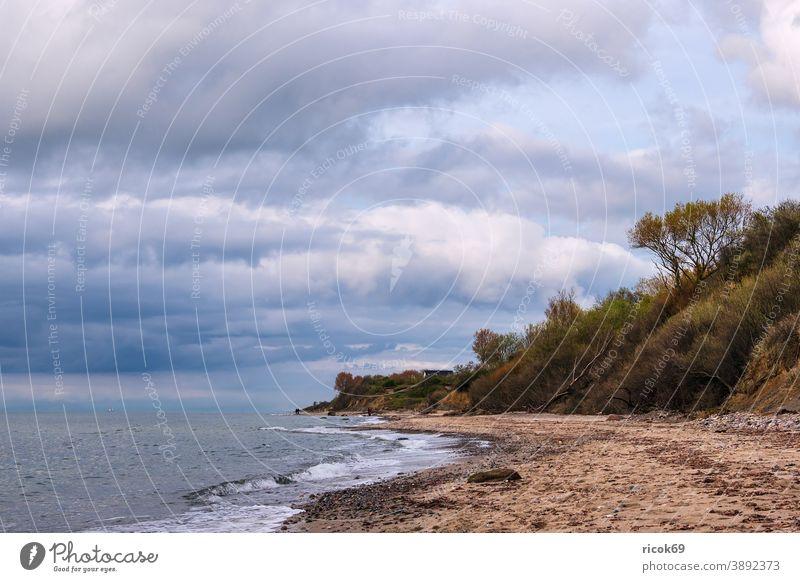 Steine an der Ostseeküste bei Meschendorf Küste Meer Mecklenburg-Vorpommern Strand Felsen Findlinge Baum Steilküste Himmel Wolken blau Wetter Klima Landschaft