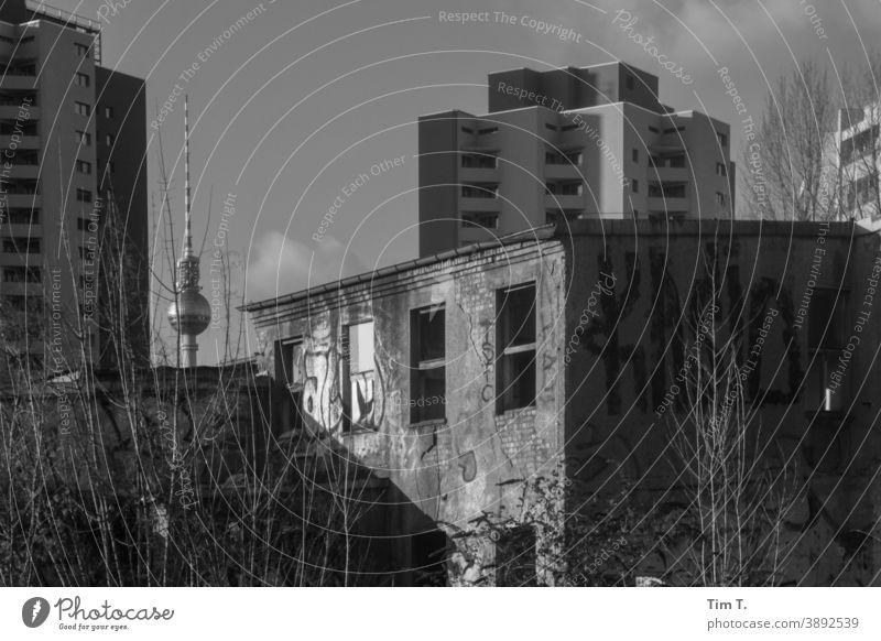 ein altes verlassenes Haus . Im Hintergrund die Plattenhochbauten an der Jannowitzstraße Altbau Berlin Mitte Fernsehturm tv tower s/w b/w Schwarzweißfoto b&w