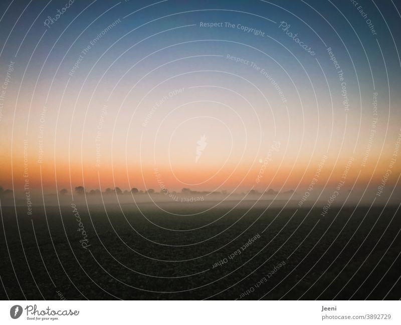 Der Mond ist aufgegangen   herbstlicher Sonnenuntergang im Nebel   Horizont leuchtet orange und blau   Nebelschleier liegt über den Feldern Mondaufgang Vollmond