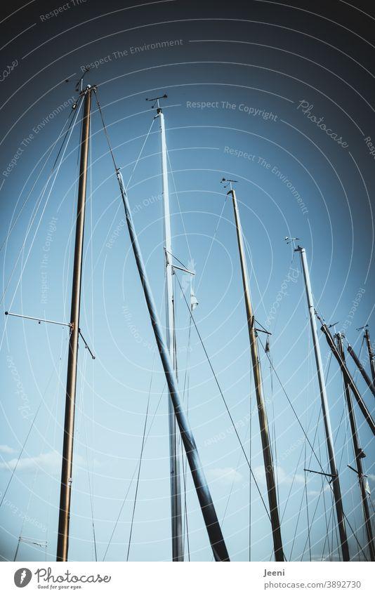 Blauer Himmel im Hafen | Masten der Segelboote ragen hoch hinaus Marina blau Wasserfahrzeuge Schifffahrt Segeln Boot Bootsmast schiffsmast Meer See Wolken weiß