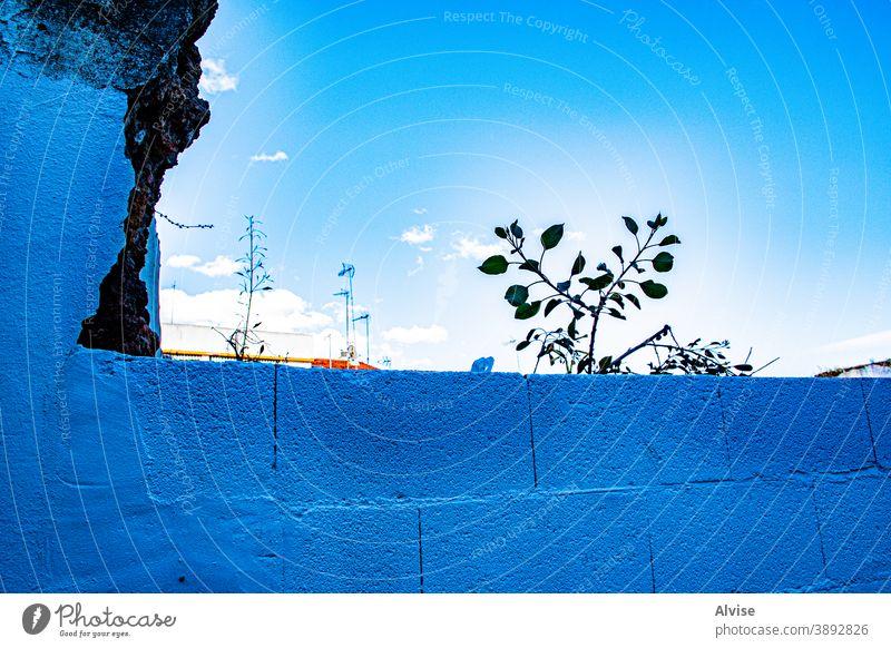 blaue Ziegel kleine Anlage und viel Himmel Wand Muster Hintergrund Baustein Textur retro Beton Oberfläche Struktur texturiert altehrwürdig Architektur abstrakt