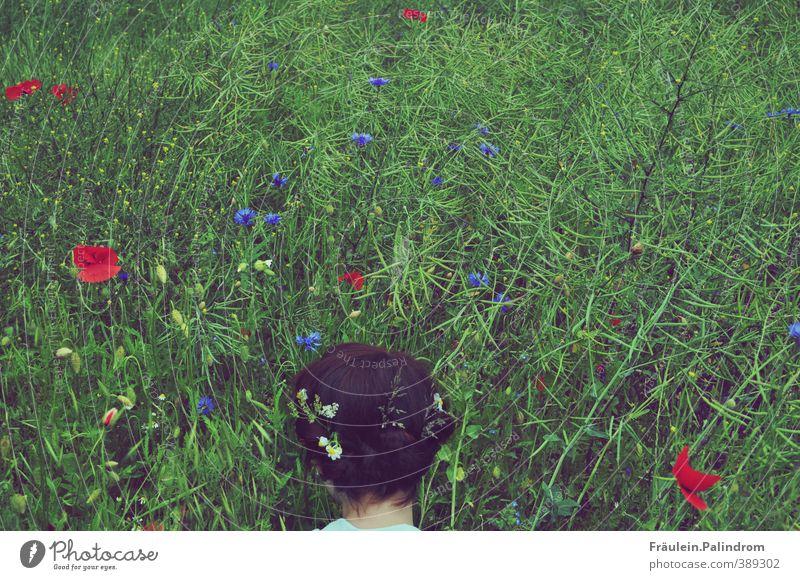verwurzelt V. Mensch Frau Natur Jugendliche Ferien & Urlaub & Reisen Pflanze Landschaft Blume ruhig Junge Frau Erwachsene Umwelt Wiese 18-30 Jahre feminin Gras