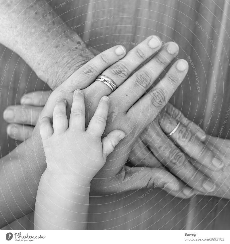 Hände von vier Generationen alt Lebensalter Baby Eltern Familie Finger Frau Freude frühere Zeiten Gemeinschaft Glück Großmutter Hand Kind Kraft Liebe Mutter