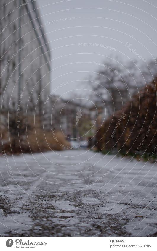 Pfad im Schnee in der Stadt mit Plattenbauten Frost NAchbarschaft Fassade Menschenleer Häusliches Leben Außenaufnahme Architektur Hochhaus Haus Wohnung Gebäude