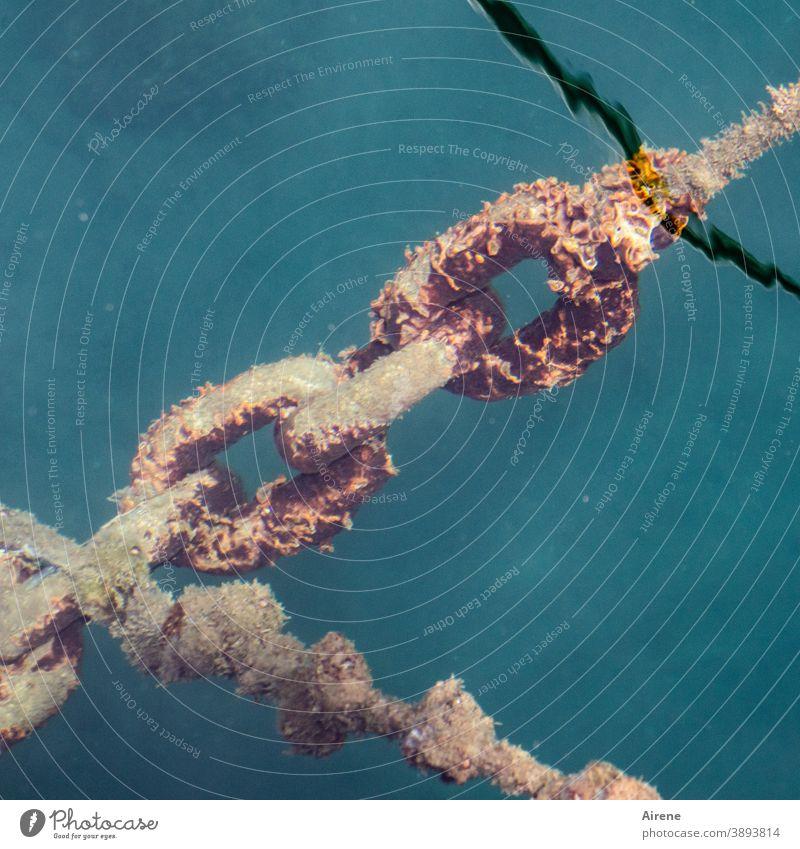 Angriff der Elemente Kette Ankerkette Rost Metall Wasser Meerwasser Salzwasser Zerstörung Zersetzung Beschädigung verrotten Alterserscheinung Haltbarkeit
