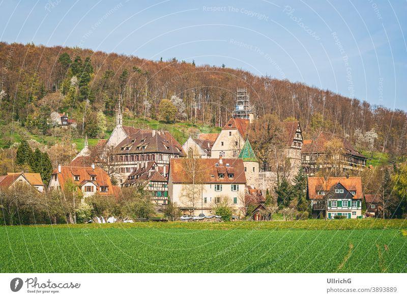 Impressionen von Ort und Schloss- und Klosteranlage Bebenhausen bei Tübingen, Baden-Württemberg, Deutschland. Kloster Bebenhausen Zisterzienser Gnothimage Gotik