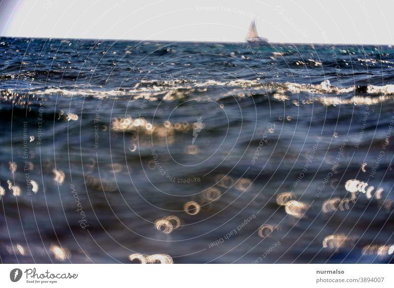 Donuts with sailing wessel Meer salzwasser wellen mittelmeer segelboot ferne horizont glitzern urlaub segeln schwimmen verreisen sardinien natur natürlich hitze