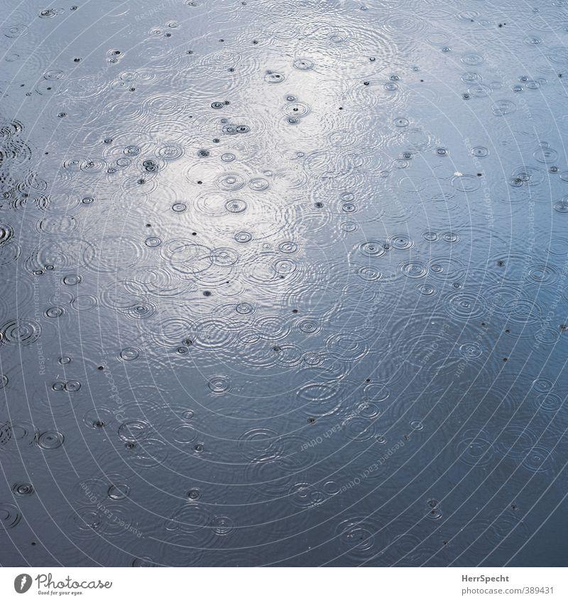 I think it's gonna rain today Natur Wasser Wetter schlechtes Wetter Regen Teich See Fluss ästhetisch kalt rund schön grau Kreis Wassertropfen Wellenform