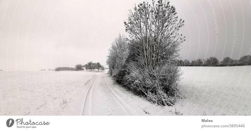 Ländliche Winterlandschaft mit frisch gefallenem Schnee Hintergrund schön Schönheit Ast Gebäude Weihnachten kalt Land Landschaft driften Fußweg Wald Frost