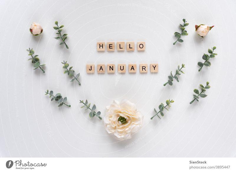 Hallo Januar-Worte auf weißem Marmor-Hintergrund Alphabet Konzept Text Gruß Holz Monat hölzern Nachricht Design Business Zeichen Jahr neu Glück