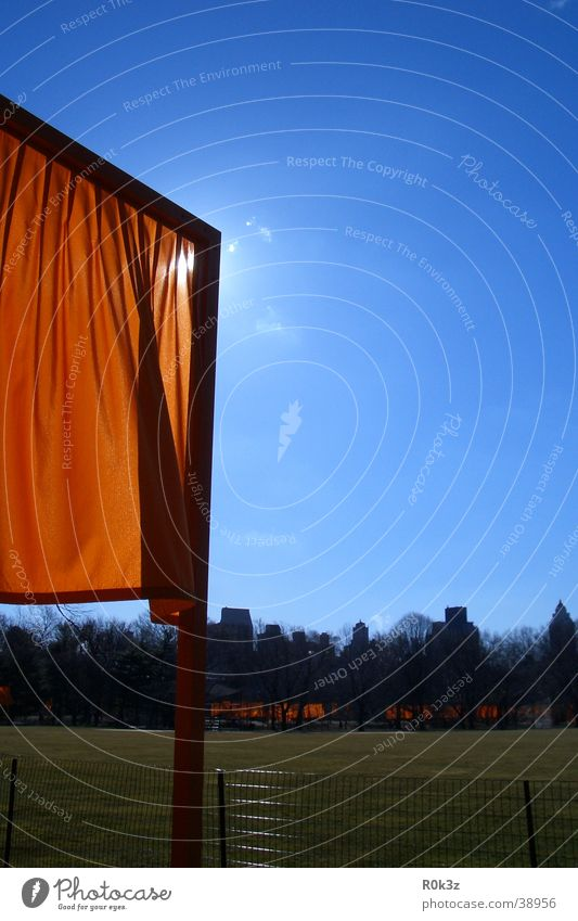 theGates Himmel Wiese orange New York City Ausstellung Safran