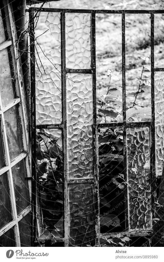 Schwarz-Weiß-Fenster Verlassen Haus alt altehrwürdig heimwärts Baum Holz Gebäude hölzern ländlich Architektur Natur Dach Struktur gealtert rustikal Land