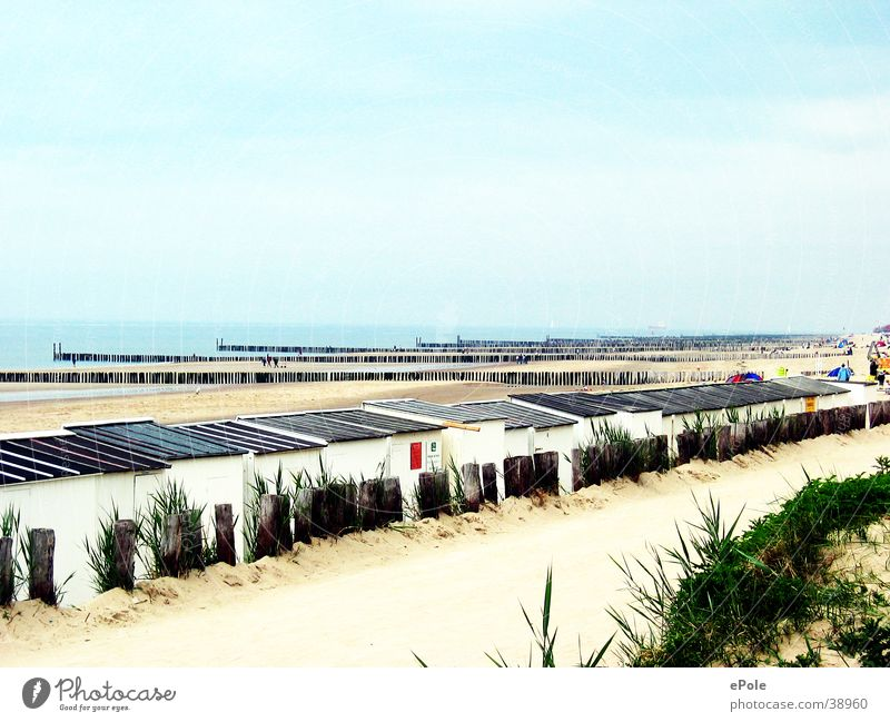Mal die Seele baumeln lassen Meer Strand ruhig Erholung Niederlande