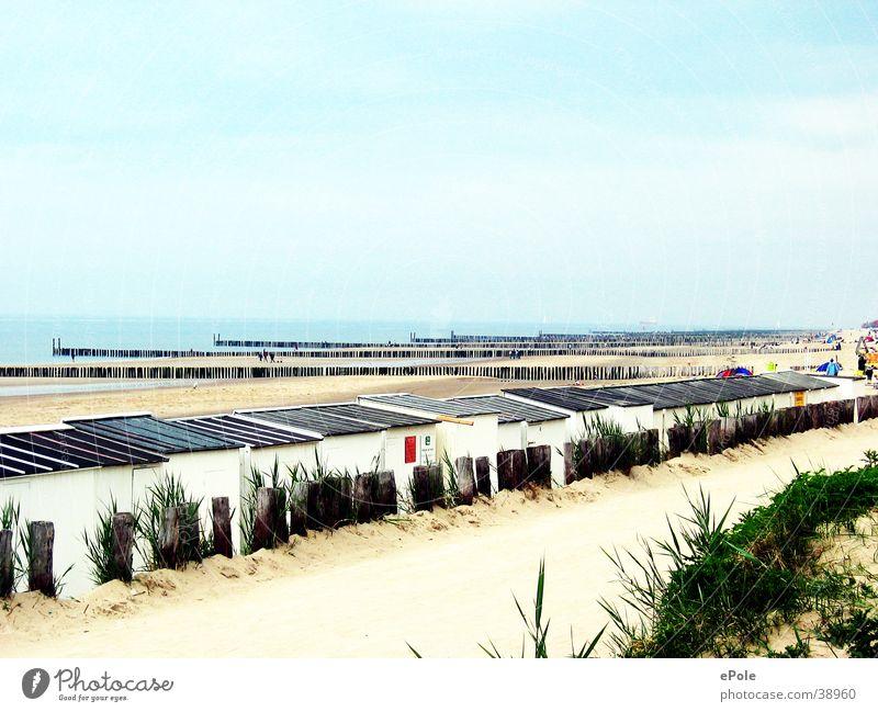 Mal die Seele baumeln lassen Niederlande Meer Strand ruhig Erholung NL